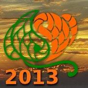 Logo cielo sombra 2013