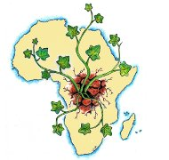 Africa_renace 190