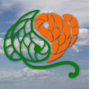 Logo cielo 190